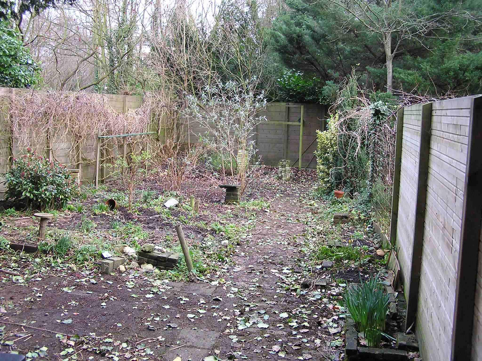 Tuin zonder brandnetel, bramen en klimop